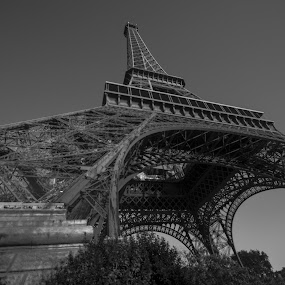 The Eiffel Tower by João Ferreira - Uncategorized All Uncategorized ( paris, the eiffel tower )