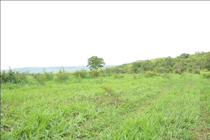 Fazenda rural à venda, Zona Rural, Uberaba.