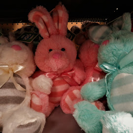 by Denise O'Hern - Public Holidays Easter
