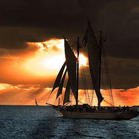 Sunset Sailing by Lorraine D.  Heaney - Landscapes Waterscapes (  )