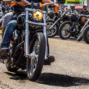 Harley Davidson rides again by Roger Hamblok - Transportation Motorcycles ( harley davidson, harley, detail, reflection, europe, motorbike, gauzy, parts, hd, handlebar, petrol tank, colour, mirror, details, color, leopoldsburg, davidson, harley days, motorcycle, harley-davidson motor company, hazy, misty )