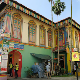 Last Surviving Chinese Villa in Little India by Dennis  Ng - Buildings & Architecture Public & Historical (  )
