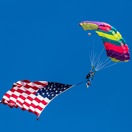 Parachuting with American Flag by Dave Lipchen - Sports & Fitness Other Sports ( american flag, parachuting )