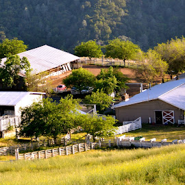 Northern California Farm on Mount Diablo by Kathleen Koehlmoos - Buildings & Architecture Other Exteriors ( farm on mount diablo, walnut creek california, northern california, ranch on mount diablo, mount diablo )