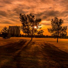 Millwood City Park by Joseph Law - City,  Street & Park  City Parks