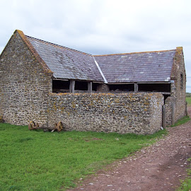 Old stone farm building   by Jenny Noraika - Buildings & Architecture Other Exteriors ( farm, shed, stone, beach, animal )