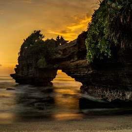 The Dinosaur's Drinking by Joshua Sujasin - Landscapes Sunsets & Sunrises ( bali, waterscape, sunset, tanah lot, landscape )