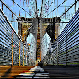 WEBSPECTIVE by Jose Ravelo - Buildings & Architecture Bridges & Suspended Structures ( brooklyn bridge, nyc, olevar, brooklyn )