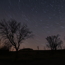 Star Trails by Laura Gardner - Novices Only Landscapes ( water, lights, green, nd, stars, night time, night, star trails, lake sakakawea )