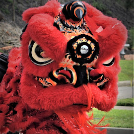 Diversity Parade by Lorna Littrell - Public Holidays New Year's Eve ( parade, diversity, red, costume, chinese new year )