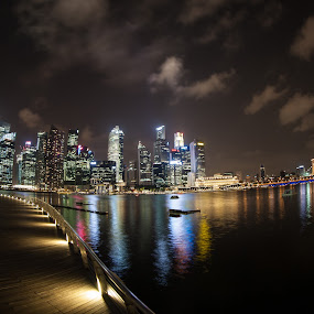 SINGAPORE AT NIGHT by Frank Photography - City,  Street & Park  Vistas ( honeymoon, skyline, asia, 2012, holidays, night, marina bay, singapore, mood factory, color, lighting, moods, colorful, light, bulbs, mood-lites, city at night, street at night, park at night, nightlife, night life, nighttime in the city )