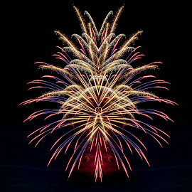Abstract Fireworks by Ruth Sano - Abstract Fire & Fireworks ( abstract, colorful, artistic, fireworks )