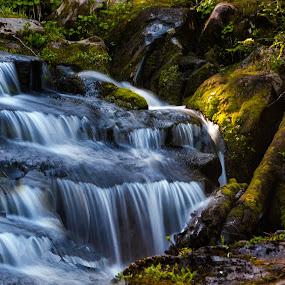 Falls Rainier by Clement Stevens - Landscapes Waterscapes ( splash, waterfall, slow, sun,  )