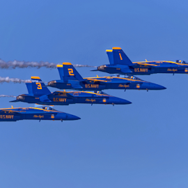 Blue Angels 900 by Raphael RaCcoon - Transportation Airplanes