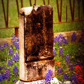 Grave by Brenda Shoemake - City,  Street & Park  Cemeteries