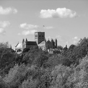 St Albans by Worowsky Papa - Landscapes Mountains & Hills ( countryside, england, park, cathedral, pwcbwlandscapes )