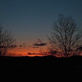 Sunset Sky by Judy Laliberte - Novices Only Landscapes ( orange, sunset, dark, trees, night )