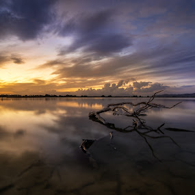 The Mirror of the sky by Giorgos Makropoulos - Landscapes Sunsets & Sunrises ( kos, clouds, sea wood, sky, wood, colorful, salt lake, sunset, greece,  )
