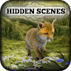 Hidden Scenes - Cute Critters