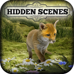 Cover art Hidden Scenes - Cute Critters