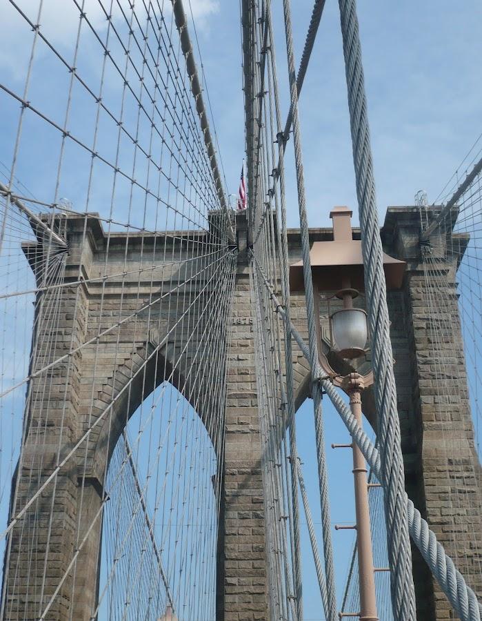by Sarah Strutzel - Buildings & Architecture Bridges & Suspended Structures ( brooklyn bridge )