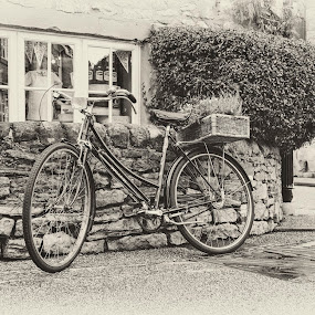Bicycle by Steven Stamford - Transportation Bicycles ( cycle, raleigh bike, delivery bike, raleigh bicycle, bike, black and white, delivery, bicycle,  )