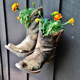 Old boots by Mary Gallo - Artistic Objects Clothing & Accessories (  )