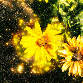 yellow flowers by LADOCKi Elvira - Digital Art Things ( flowers, garden )