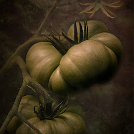 by Al Duke - Digital Art Things