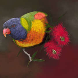 Rainbow Lorikeet by Nicole Rix - Painting All Painting ( bird shots, bird, colourfull, rainbow_lorikeet, painter )