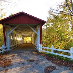 Covered Bridge by Vijay Govender - Buildings & Architecture Bridges & Suspended Structures ( ohio, autumn, fall, covered bridges, bridges )