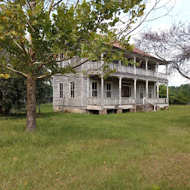 HOUSE CIRCA 1800'S by Douglas Edgeworth - Buildings & Architecture Decaying & Abandoned