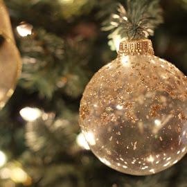 Christmas Ornament by Amanda  Castleman  - Public Holidays Christmas ( holiday, tree, decoration, still life, ornament, christmas, gold )