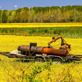 The Forgotten Yellow Field Equipment by Norma Brandsberg - Artistic Objects Industrial Objects ( www.elegantfinephotography.com, award winning, nbrandsberg@gmail.com, photo, norma brandsberg, photography,  )