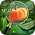 Hidden Objects - Mystery Farms file APK Free for PC, smart TV Download
