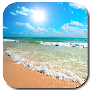 Beach Video Live Wallpaper