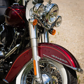 Deluxe by James Baker - Transportation Motorcycles ( harley, motorbike, chrome, flstn, softail, gravel, red, bike, fender, deluxe, davidson, motorcycle, day )