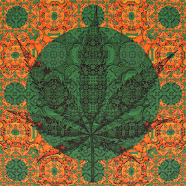Ganja by Frank Herner - Illustration Abstract & Patterns ( abstract, abstract art, weed, fractal, fractals )