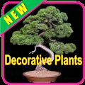 Decorative Plants APK for Ubuntu