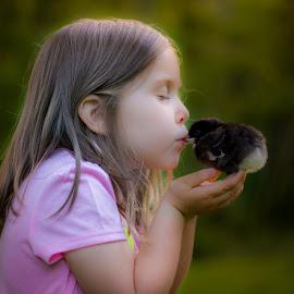 Kiss the Chicken  by Brandi Davis - Babies & Children Children Candids ( chicken, kiss, chick, girl, outdoors, dusk )