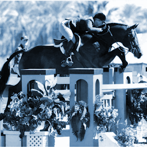 Modern Show Jumping 3 in 1