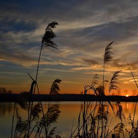 by Petr Šmolík - Landscapes Sunsets & Sunrises