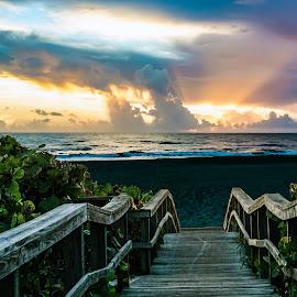 Come by Joan Sharp - Digital Art Places ( sunrise, greenery, beach, boardwalk, landscape,  )
