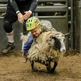 Hold on by Cindy Hicks-Butler - Sports & Fitness Rodeo/Bull Riding