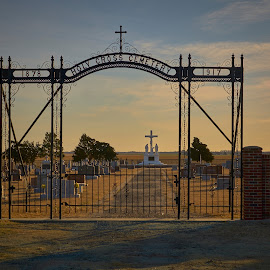 Pioneer Cemetery  by Jeff Brown - City,  Street & Park  Cemeteries ( park, pioneer, cemetery, city )