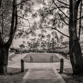 Dana Point Park-2 by Matt Folsom - City,  Street & Park  City Parks ( dana point, lpa, night, sunrise )
