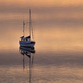 Yacht at dawn, Menai Straits by Ian Harvey-Brown - Transportation Boats