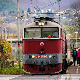 754-054 by Nagy Attila - Transportation Trains ( 123 )