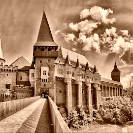 Corvin Castle by Comsa Bogdan - Buildings & Architecture Public & Historical ( old, building, hunedoara, beautiful, castelul hunedoara, romania, historic district, enjoy, travel, old building, photo, photography, corvin castle, history, frame, gorgeous, comsa bogdan, castle, historical, castelul corvinilor, public, travel photography, wonderful, romania prin obiectiv )