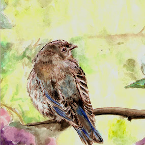 Bluebird on Spring Afternoon by Cindy Swinehart - Mixed Media All Mixed Media ( bluebird, flowers, spring, pretty )